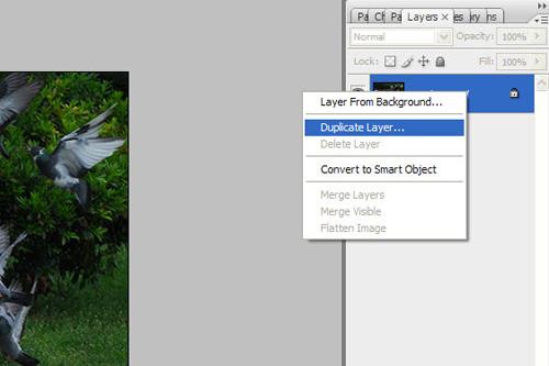 dupliciranje layera