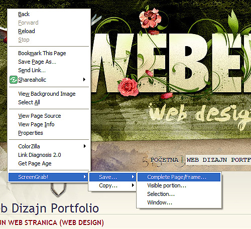 complete page - frame print screen