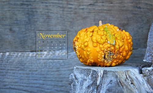 november-desktop calendar-2011